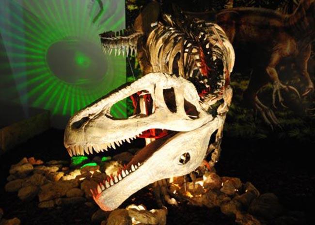 Οι δεινόσαυροι της Παταγονίας κατέφθασαν στο Γουδή! thumbnail
