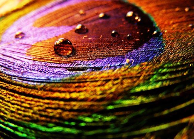 Θέλεις χρώμα στο σπίτι χωρίς να βάψεις τοίχους;  thumbnail