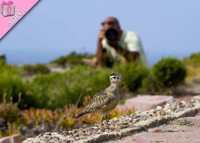 Κέρδισε 3ήμερο σεμινάριο φωτογραφίας στη φύση, αξίας 120 ευρώ! thumbnail
