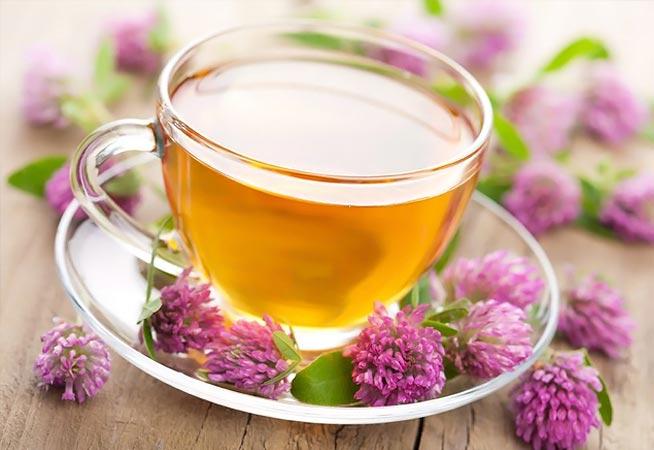 Βαλεριάνα, το ευεργετικό βότανο για αϋπνία και άγχος! thumbnail
