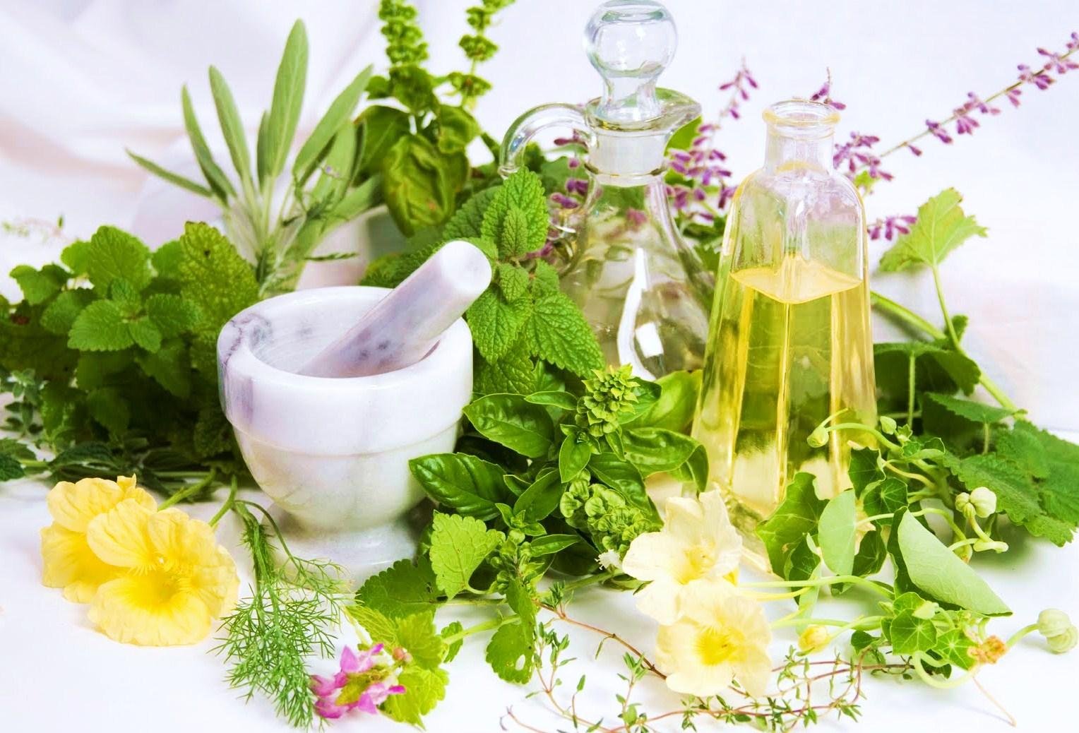10 βότανα κατά του άσθματος! thumbnail