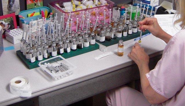 Εμβόλιο για όλες τις αλλεργίες σε 4 χρόνια! thumbnail