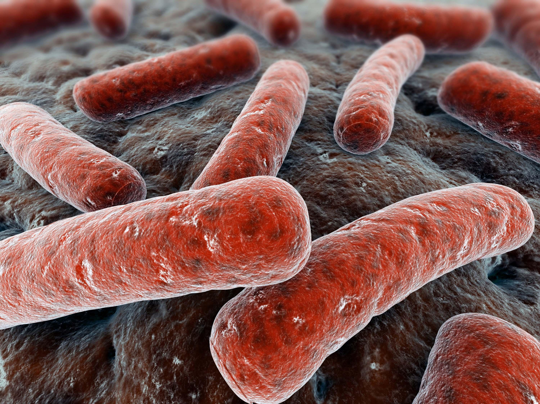 Η φυματίωση επιστρέφει και αντιστέκεται στα φάρμακα...  thumbnail