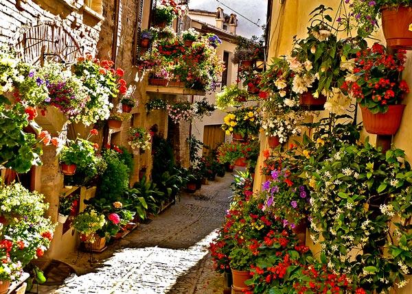 Μια πόλη γεμάτη λουλούδια thumbnail