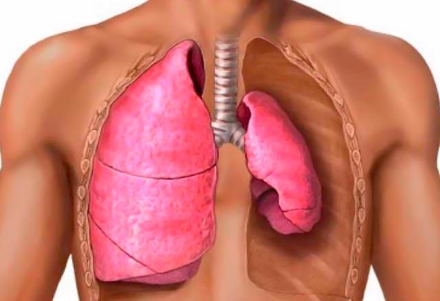 Τραυματισμοί στους πνεύμονες: πού οφείλονται; thumbnail