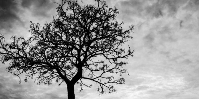 Πώς εξηγείται ψυχαναλυτικά το άγχος του θανάτου;
