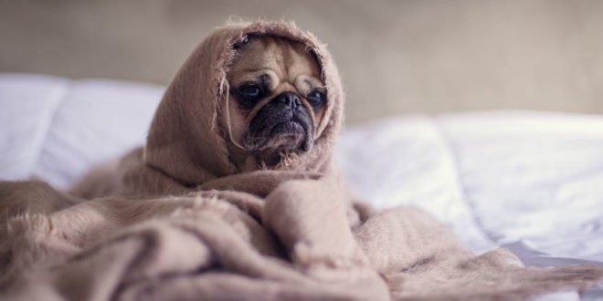 Οι προβλέψεις του Σαββατοκύριακου: Τα 3 ζώδια που δεν θα… θέλουν να βγουν από το σπίτι