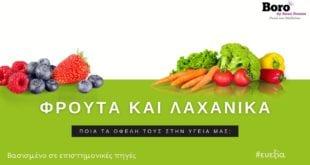 φρούτα-και΄λαχανικά-και-η-επίδραση-τους-στην-υγεία-μας