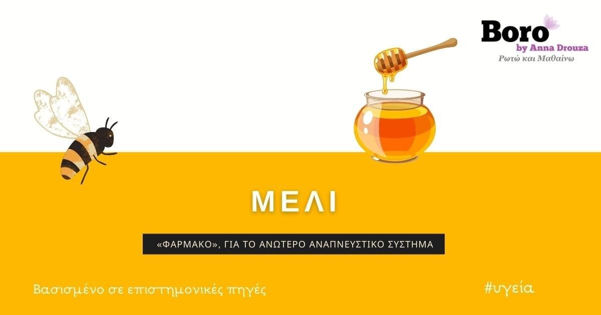Μέλι:-Το-Καλύτερο-«Φάρμακο»,-Για-Το-Ανώτερο-Αναπνευστικό-Σύστημα