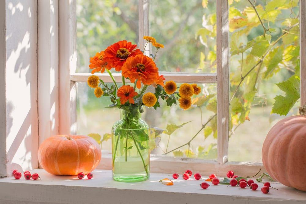 Διακοσμήστε-τον-χώρο-σας-με-φυτά-και-λουλούδια-εποχής