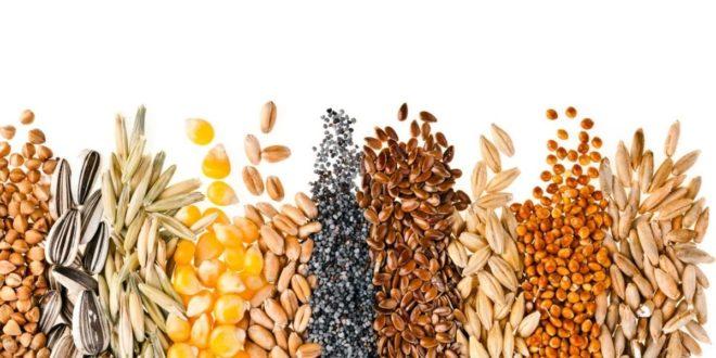 Φυτικές-ίνες:-Εσείς-γνωρίζετε-την-αξία-τους-στη-διατροφή-σας;